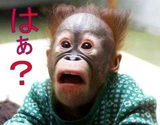 _res_blog-97-42_y_yu_uoniku_folder_795341_16_22826816_img_0-thumbnail2.jpg