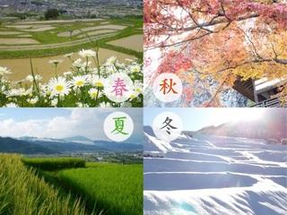shiki_mainimg.jpg